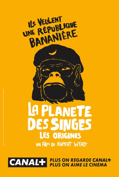 canal-singes-1