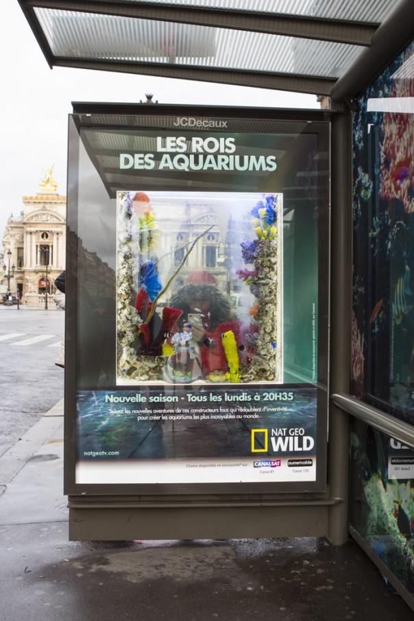 Les-Rois-des-Aquariums streetplanneur