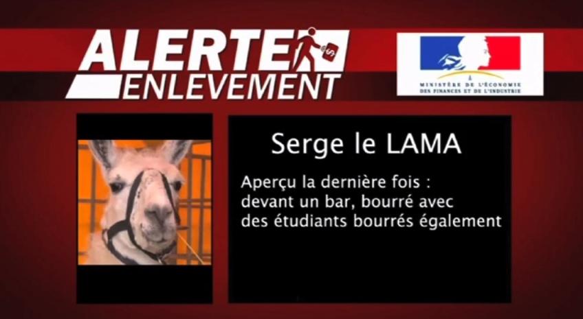 Serge-le-LAMA-humour