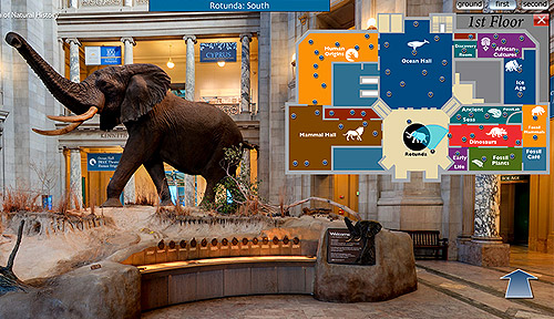 National-museum-natural-history-si-virtual-tour