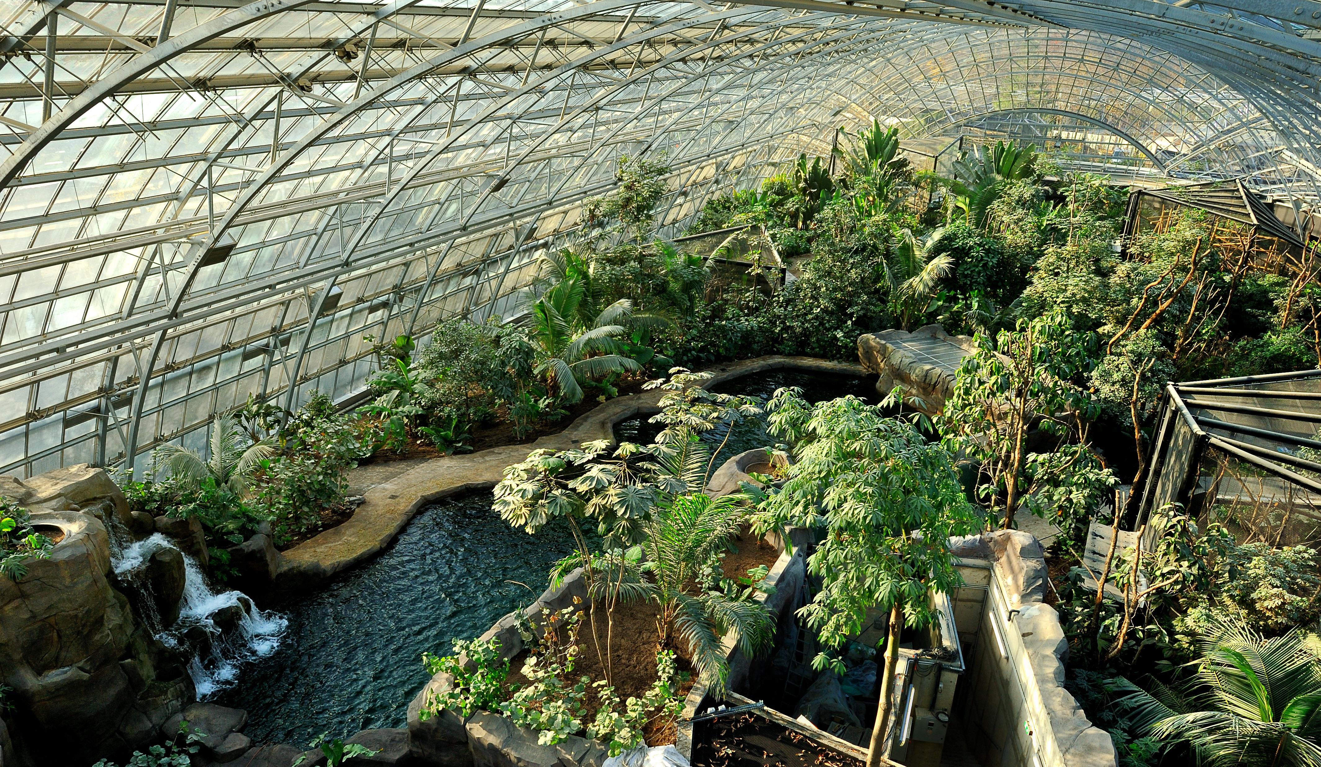 R ouverture du zoo de paris une strat gie bien rod e for Jardin animaux paris