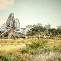 Réouverture du Zoo de Paris, une stratégie bien rodée