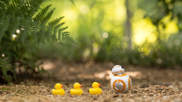 Follow-Me-bb8 sphero robot droide star wars